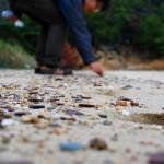 乗松メガネを通してみると海岸には古墳時代のせとうち暮らしが見えてきます
