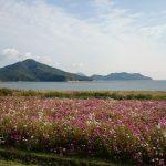 三豊市で美しい島々を見てきました。