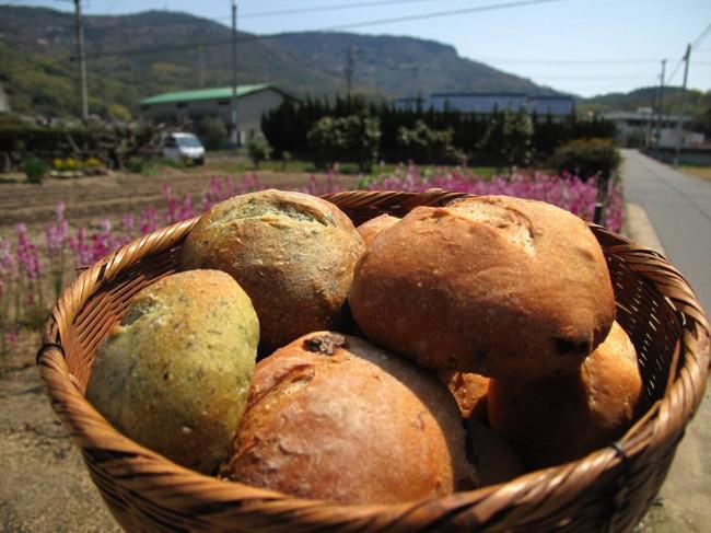 breadfest_02