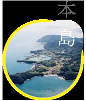 icon_hon