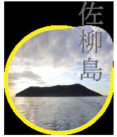 icon_sanagi