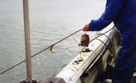 飯蛸壺漁_03