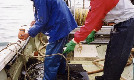 飯蛸壺漁_05